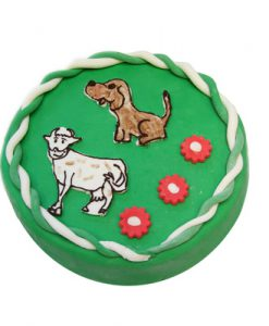 Dorty pro děti a dětské dorty